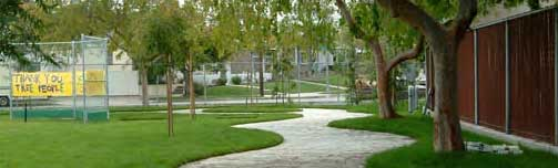 Sustainable Stormwater - Treepeople